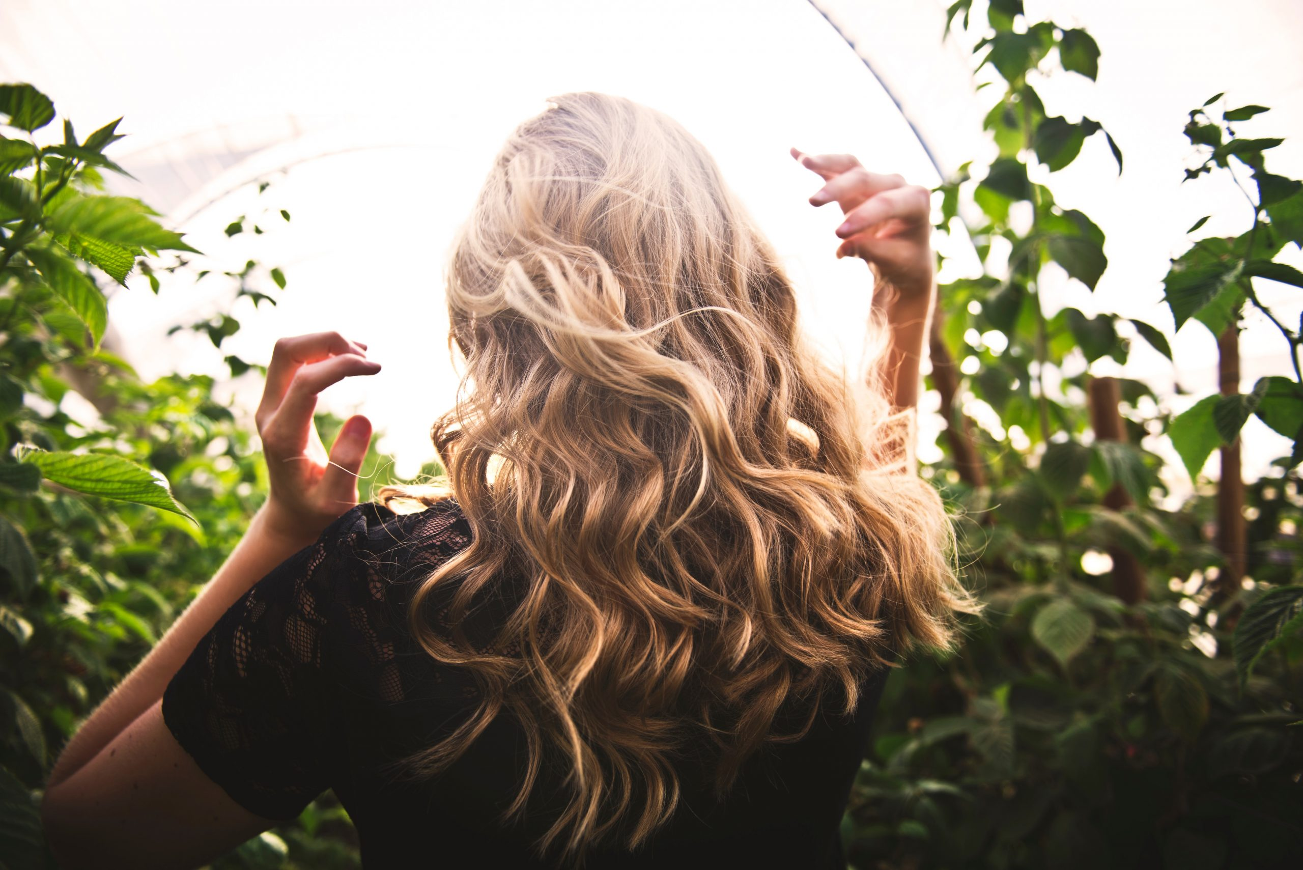 Melhore a saúde do seu cabelo lavando-o com chá