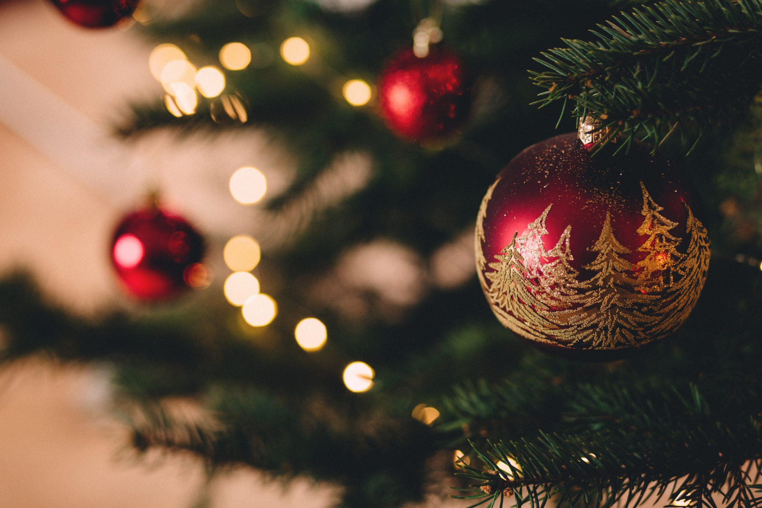 Chá de Natal – conheça os benefícios